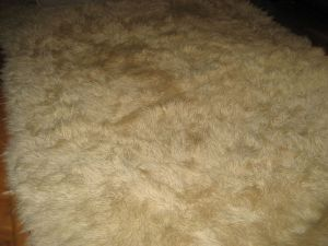 Cream.Wool.Shag.Rug.1970