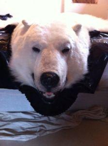 Polar.Bear.Rug